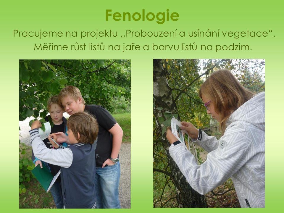 Fenologie Pracujeme na projektu,,Probouzení a usínání vegetace .