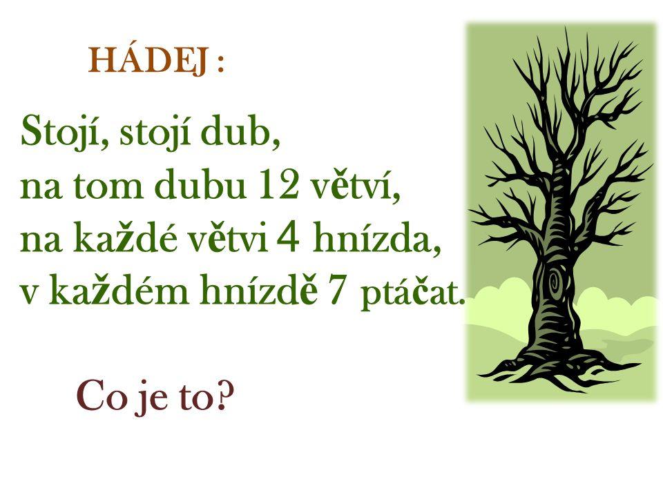 Stojí, stojí dub, na tom dubu 12 v ě tví, na ka ž dé v ě tvi 4 hnízda, v ka ž dém hnízd ě 7 ptá č at.