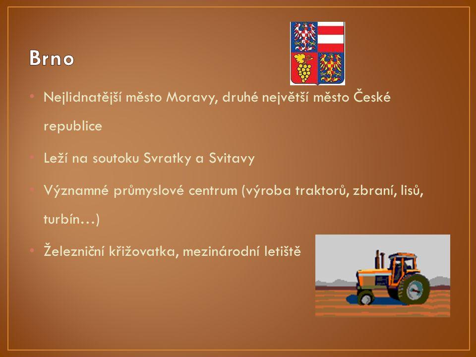 Nejlidnatější město Moravy, druhé největší město České republice Leží na soutoku Svratky a Svitavy Významné průmyslové centrum (výroba traktorů, zbraní, lisů, turbín…) Železniční křižovatka, mezinárodní letiště
