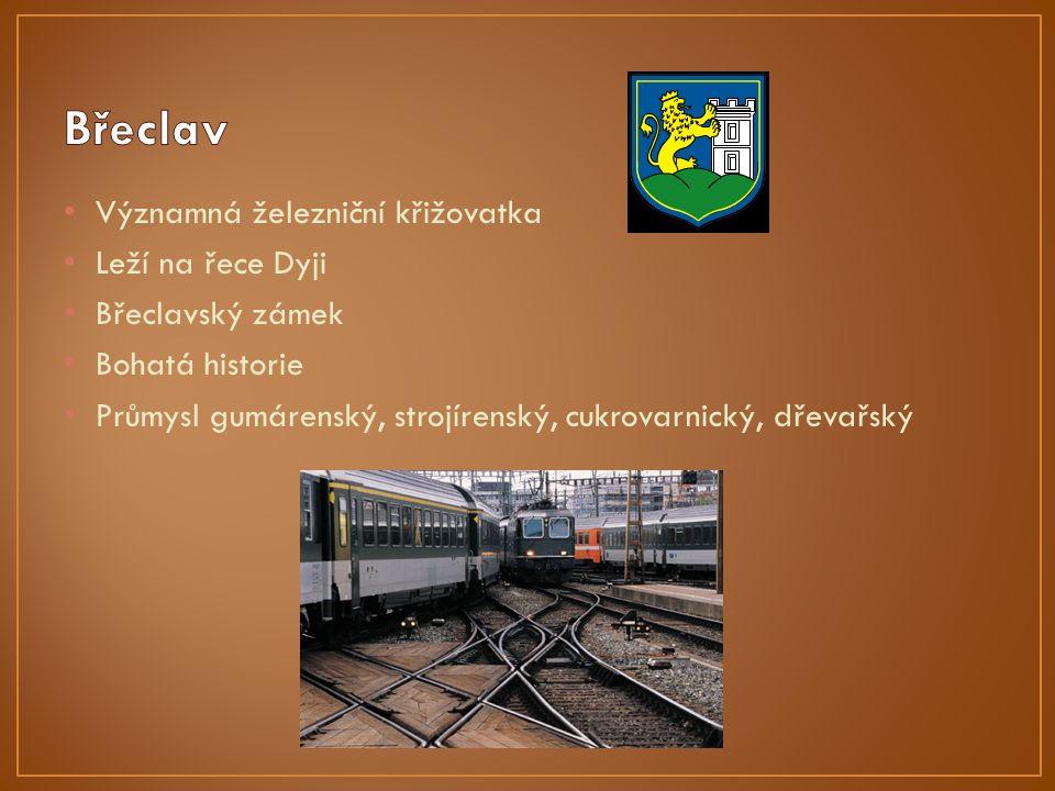 Významná železniční křižovatka Leží na řece Dyji Břeclavský zámek Bohatá historie Průmysl gumárenský, strojírenský, cukrovarnický, dřevařský