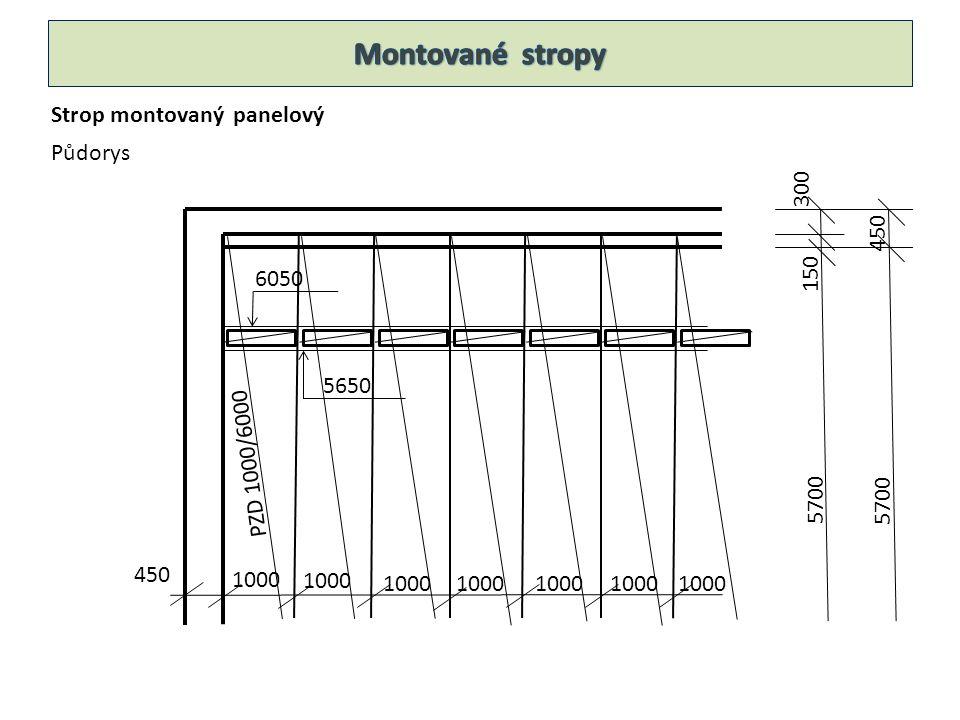 Strop montovaný panelový Půdorys PZD 1000/6000 450 1000 6050 5650 5700 450 300 150