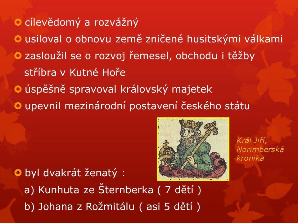  cílevědomý a rozvážný  usiloval o obnovu země zničené husitskými válkami  zasloužil se o rozvoj řemesel, obchodu i těžby stříbra v Kutné Hoře  úspěšně spravoval královský majetek  upevnil mezinárodní postavení českého státu  byl dvakrát ženatý : a) Kunhuta ze Šternberka ( 7 dětí ) b) Johana z Rožmitálu ( asi 5 dětí ) Král Jiří, Norimberská kronika