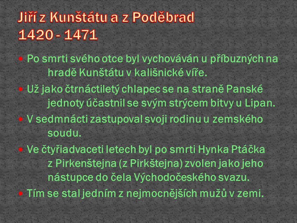 Po smrti svého otce byl vychováván u příbuzných na hradě Kunštátu v kališnické víře. Už jako čtrnáctiletý chlapec se na straně Panské jednoty účastnil