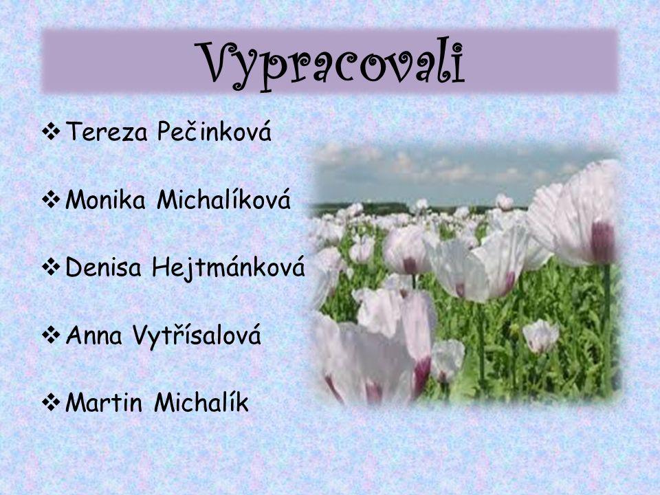 Vypracovali  Tereza Pečinková  Monika Michalíková  Denisa Hejtmánková  Anna Vytřísalová  Martin Michalík