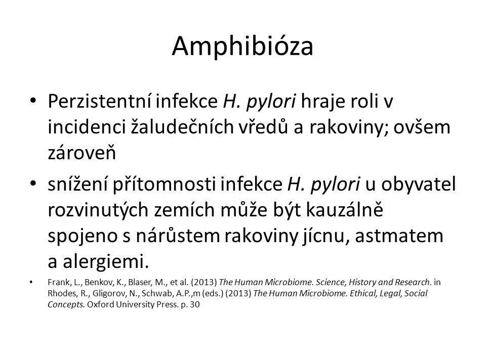 Amphibióza Perzistentní infekce H.