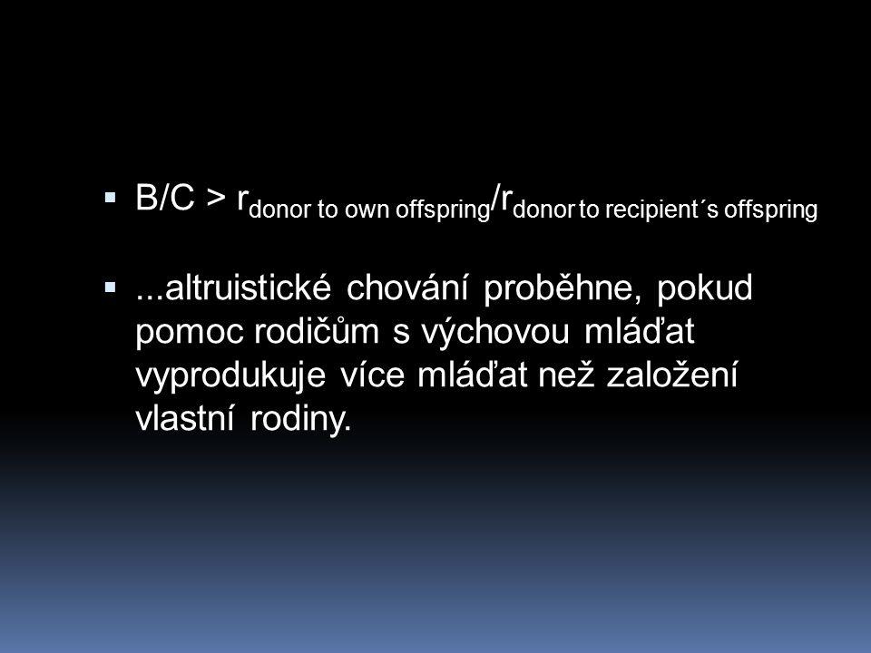  B/C > r donor to own offspring /r donor to recipient´s offspring ...altruistické chování proběhne, pokud pomoc rodičům s výchovou mláďat vyprodukuje více mláďat než založení vlastní rodiny.