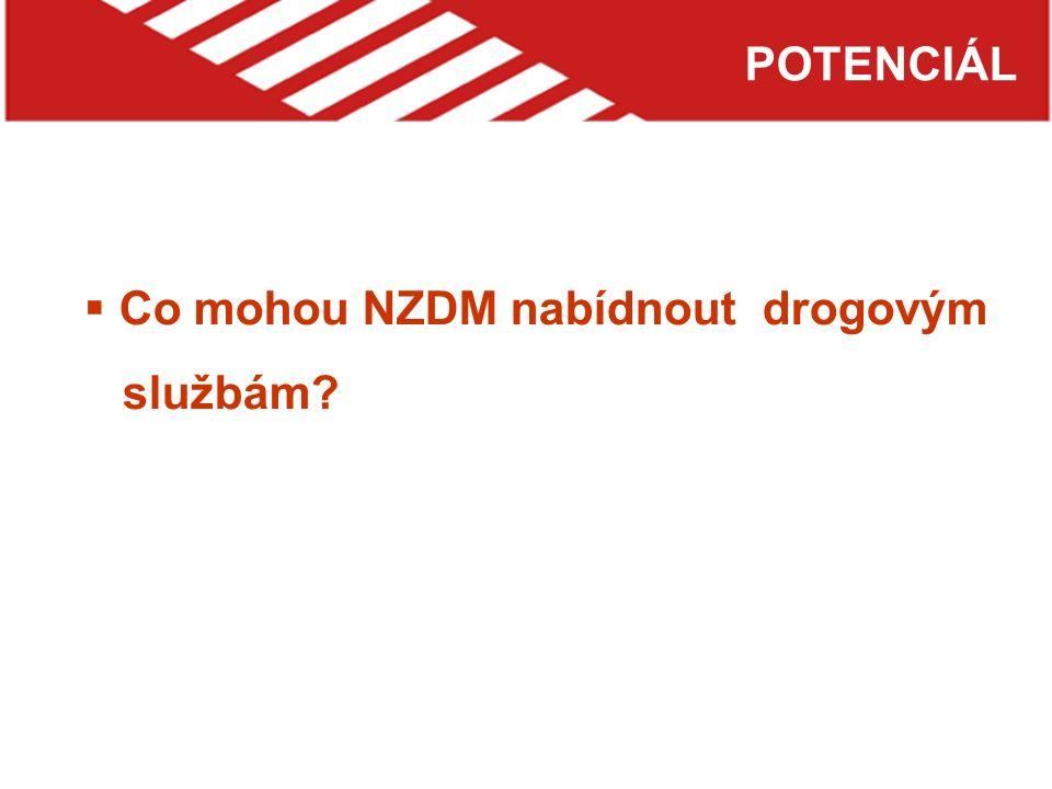 POTENCIÁL  Co mohou NZDM nabídnout drogovým službám?