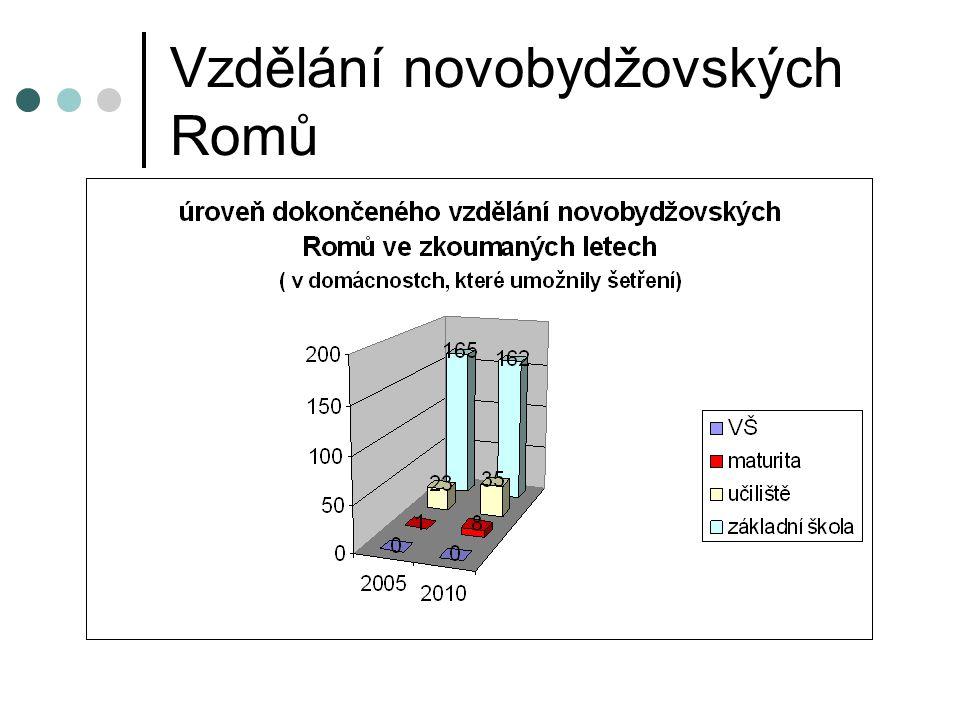 Vzdělání novobydžovských Romů