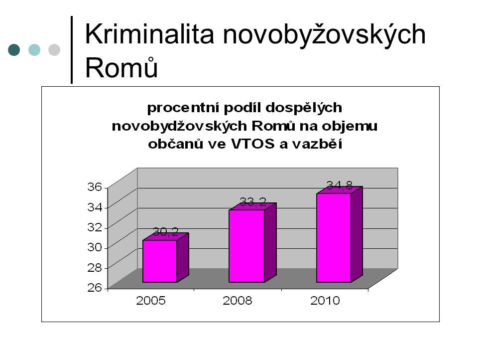 Kriminalita novobyžovských Romů