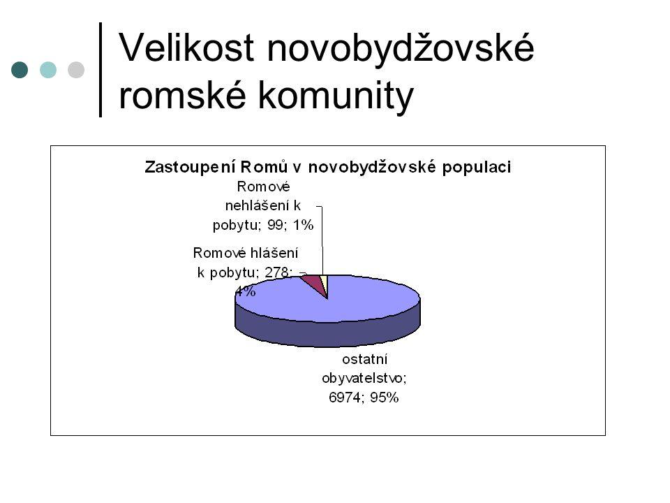 Děti novobydžovských Romů
