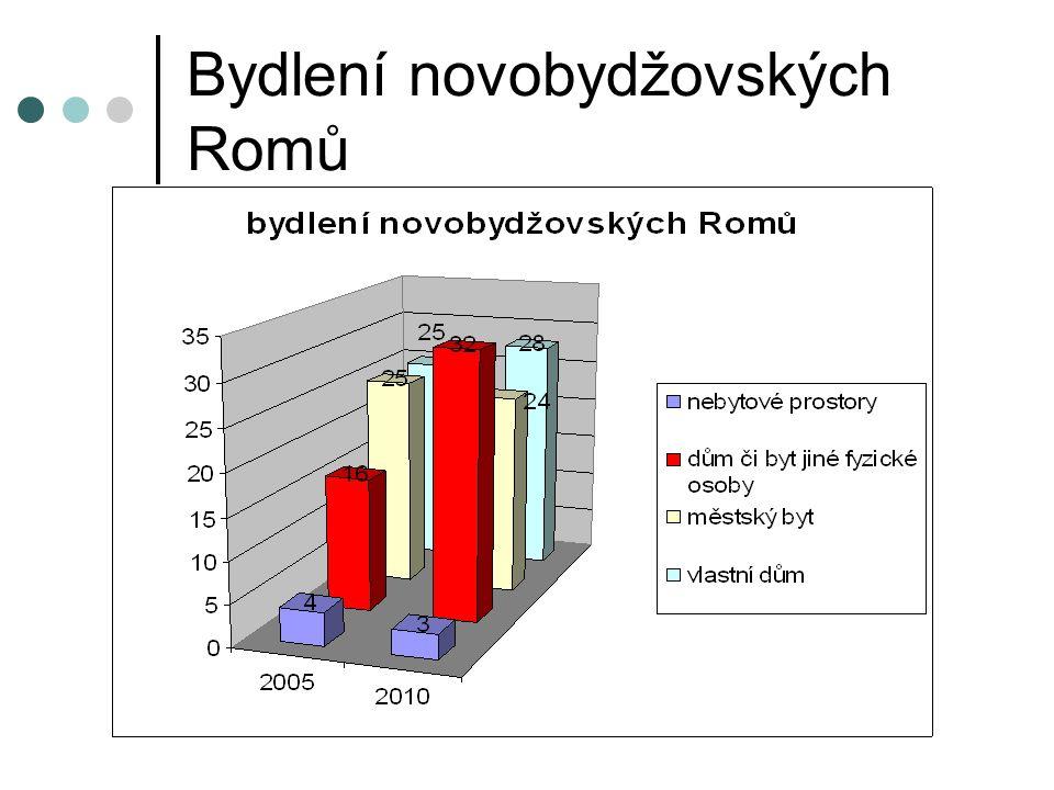 Potřeby Romů Potřeba: Trvalá podpora NZDM Propagace aktivit NZDM Názor skupiny odborníků: Za 4,5 měsíce provozu dobré výsledky Sociální práce nosným pilířem integrace Návrh na opatření: Trvale spolufinancovat provoz NZDM