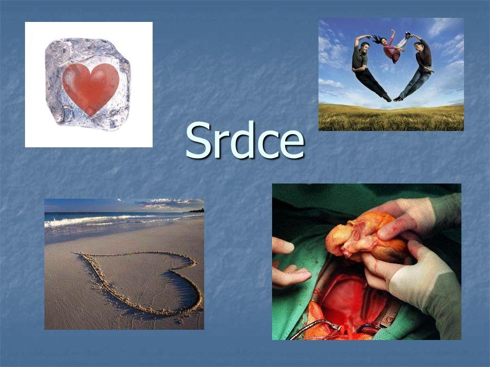 Srdce Je dutý sval Je dutý sval velikost pěsti(cca 300 gramů) velikost pěsti(cca 300 gramů) Uloženo ve vazivovém pouzdru=OSRDEČNÍKU Uloženo ve vazivovém pouzdru=OSRDEČNÍKU Má pravou a levou část Má pravou a levou část Každá z polovin je tvořena SÍNÍ a KOMOROU Každá z polovin je tvořena SÍNÍ a KOMOROU Mezi síněmi a komorami jsou CÍPATÉ CHLOPNĚ Mezi síněmi a komorami jsou CÍPATÉ CHLOPNĚ ( ty umožňují jednosměrný tok krve srdcem) ( ty umožňují jednosměrný tok krve srdcem)