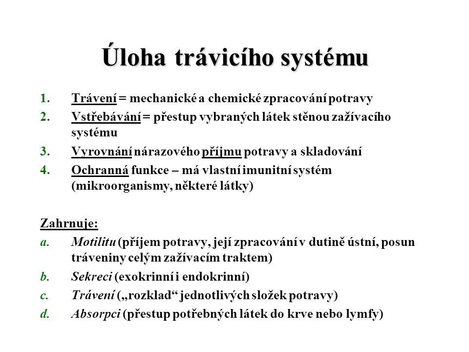 """Úloha trávicího systému 1.Trávení = mechanické a chemické zpracování potravy 2.Vstřebávání = přestup vybraných látek stěnou zažívacího systému 3.Vyrovnání nárazového příjmu potravy a skladování 4.Ochranná funkce – má vlastní imunitní systém (mikroorganismy, některé látky) Zahrnuje: a.Motilitu (příjem potravy, její zpracování v dutině ústní, posun tráveniny celým zažívacím traktem) b.Sekreci (exokrinní i endokrinní) c.Trávení (""""rozklad jednotlivých složek potravy) d.Absorpci (přestup potřebných látek do krve nebo lymfy)"""