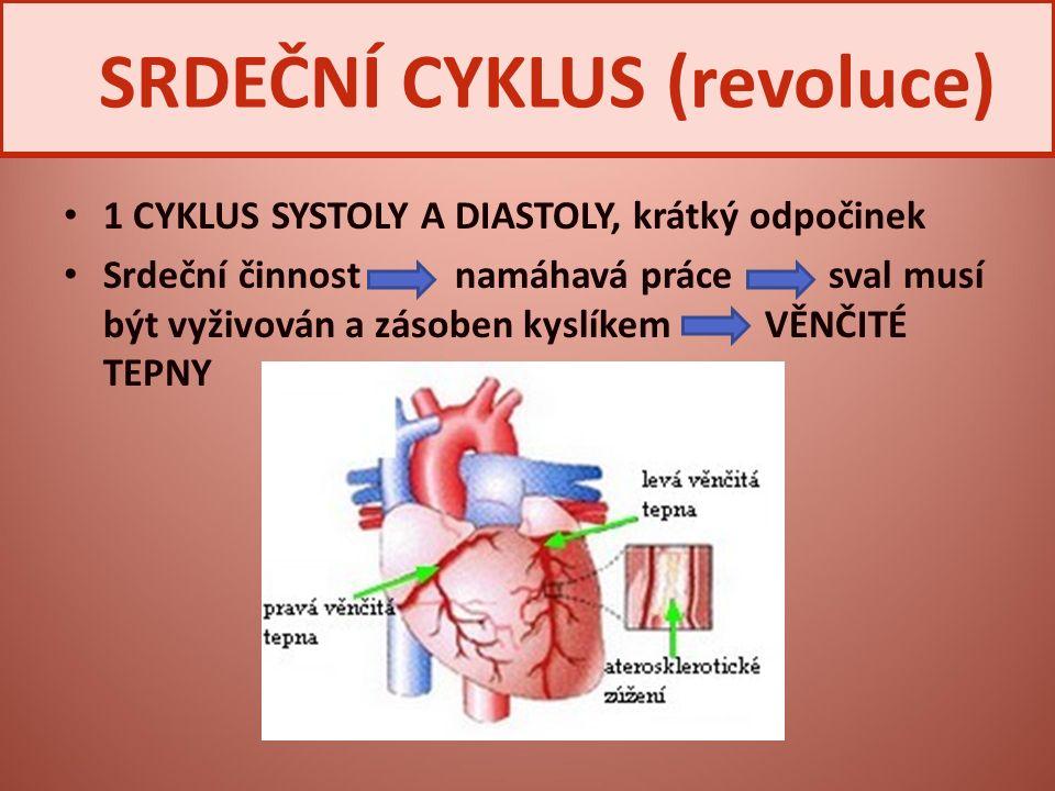 1 CYKLUS SYSTOLY A DIASTOLY, krátký odpočinek Srdeční činnost namáhavá práce sval musí být vyživován a zásoben kyslíkem VĚNČITÉ TEPNY SRDEČNÍ CYKLUS (