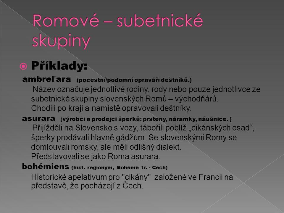  Příklady: ambreľara (pocestní/podomní opraváři deštníků.) Název označuje jednotlivé rodiny, rody nebo pouze jednotlivce ze subetnické skupiny slovenských Romů – východňárů.