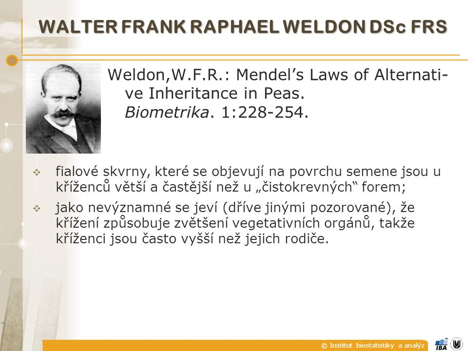 © Institut biostatistiky a analýz WALTER FRANK RAPHAEL WELDON DSc FRS Weldon,W.F.R.: Mendel's Laws of Alternati- ve Inheritance in Peas.