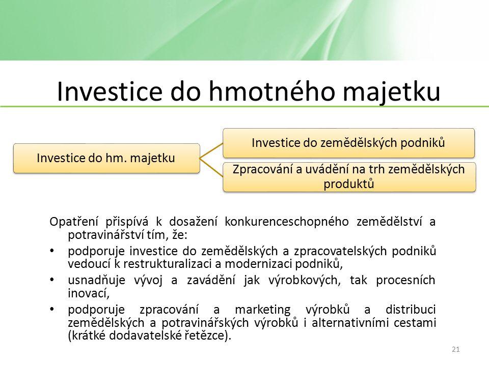 Investice do hmotného majetku Investice do hm.