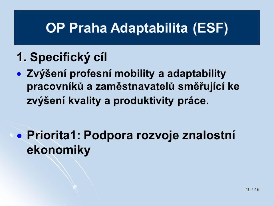 40 / 49 1. 1. Specifický cíl   Zvýšení profesní mobility a adaptability pracovníků a zaměstnavatelů směřující ke zvýšení kvality a produktivity prác