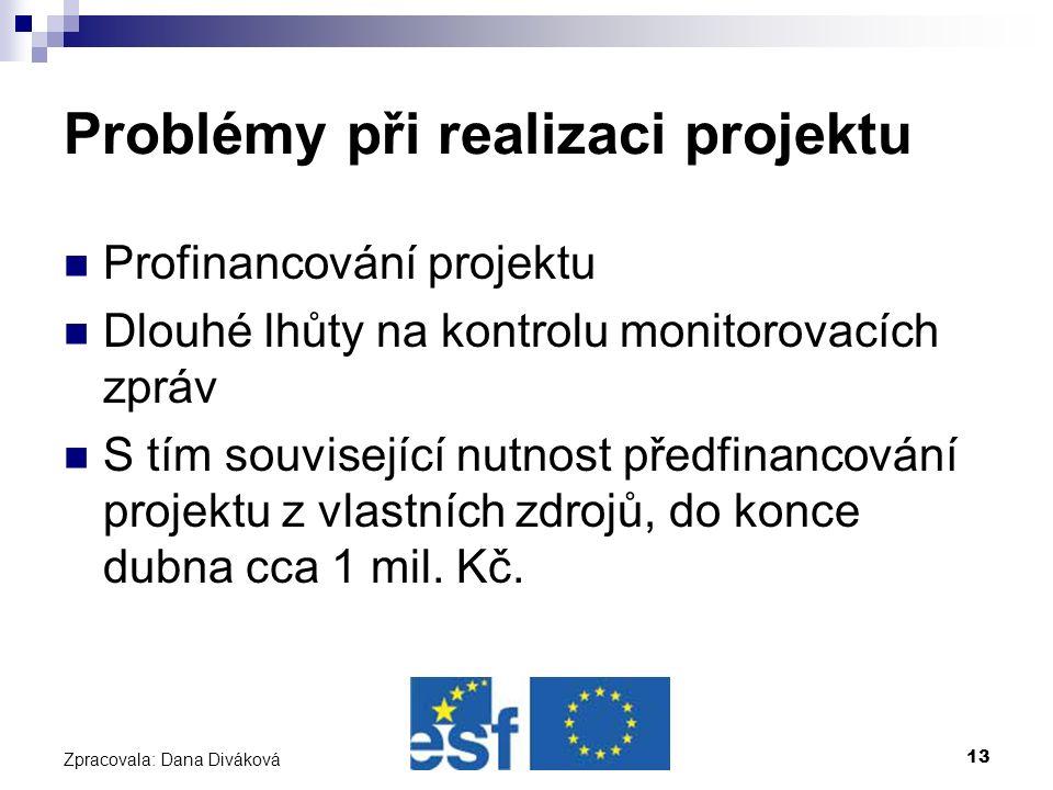 13 Zpracovala: Dana Diváková Problémy při realizaci projektu Profinancování projektu Dlouhé lhůty na kontrolu monitorovacích zpráv S tím související nutnost předfinancování projektu z vlastních zdrojů, do konce dubna cca 1 mil.