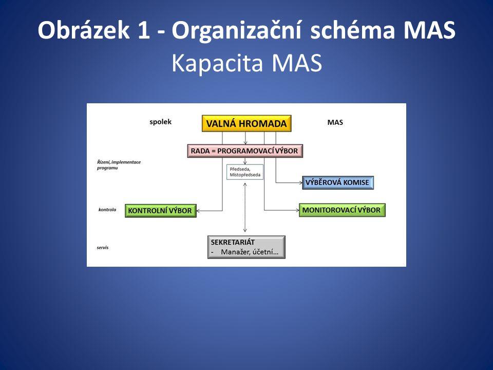 Obrázek 1 - Organizační schéma MAS Kapacita MAS