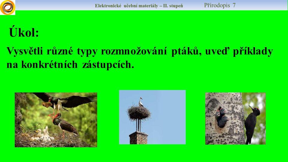 Vysvětli různé typy rozmnožování ptáků, uveď příklady na konkrétních zástupcích. Úkol:
