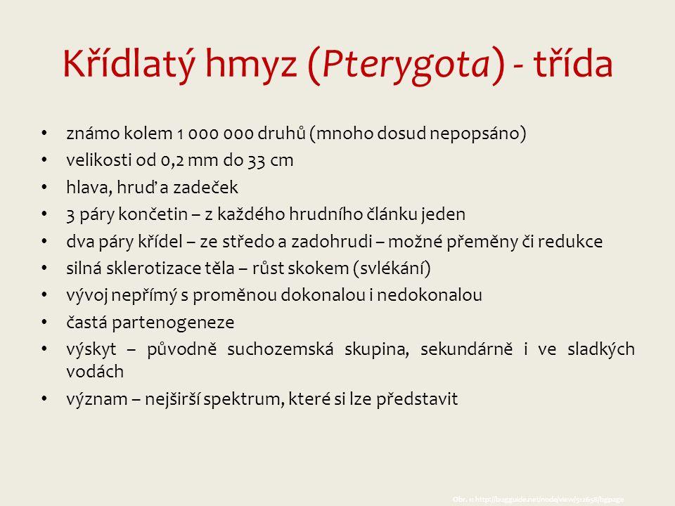 Zdroje: (k 15.10.2013) Obr.