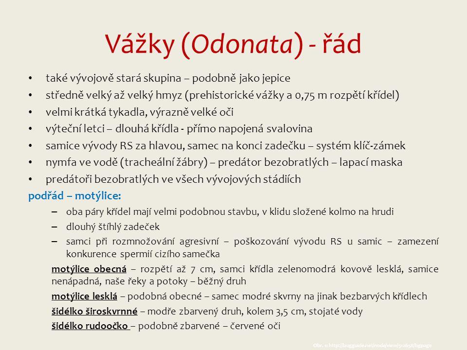 Obr.7: http://ww w.dragonf lies.cz/?p= 606 Obr.