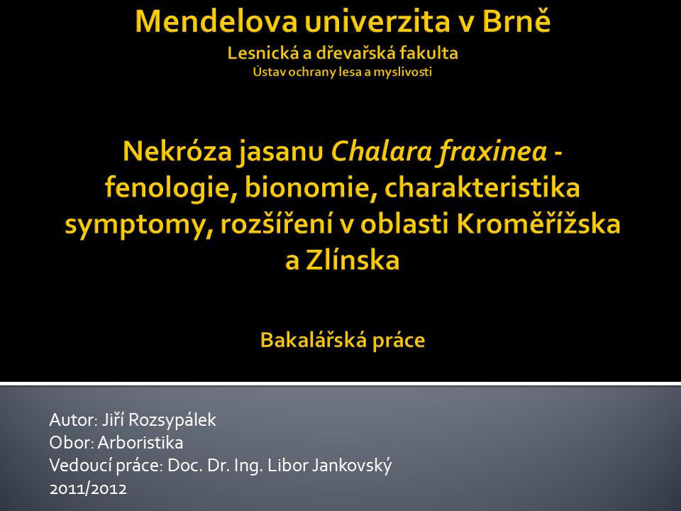 Autor: Jiří Rozsypálek Obor: Arboristika Vedoucí práce: Doc. Dr. Ing. Libor Jankovský 2011/2012