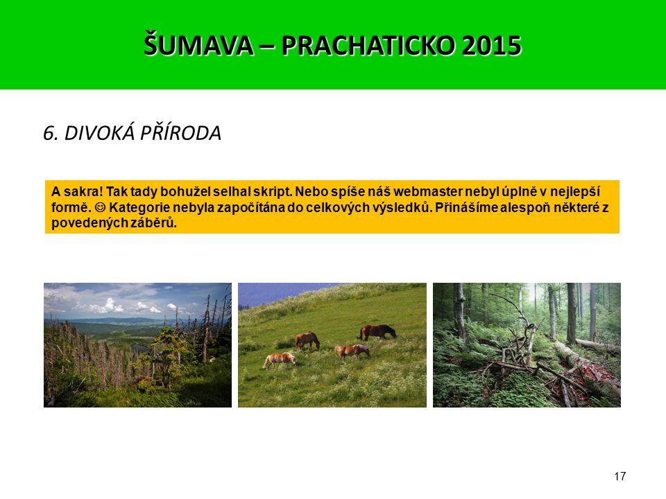 16 5. FOTOGRAF NA CESTÁCH 1. místo – Jirka (401 – 3,82) 2. místo – Miklís (399 – 3,80) 3. místo – Petr (397 – 3,78) ŠUMAVA – PRACHATICKO 2015