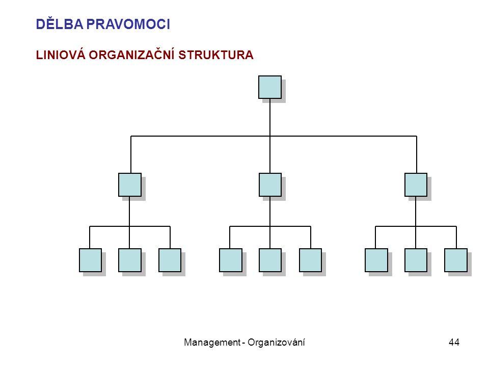 Management - Organizování44 LINIOVÁ ORGANIZAČNÍ STRUKTURA DĚLBA PRAVOMOCI
