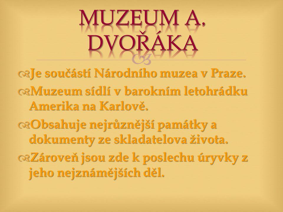   Je součástí Národního muzea v Praze.  Muzeum sídlí v barokním letohrádku Amerika na Karlově.