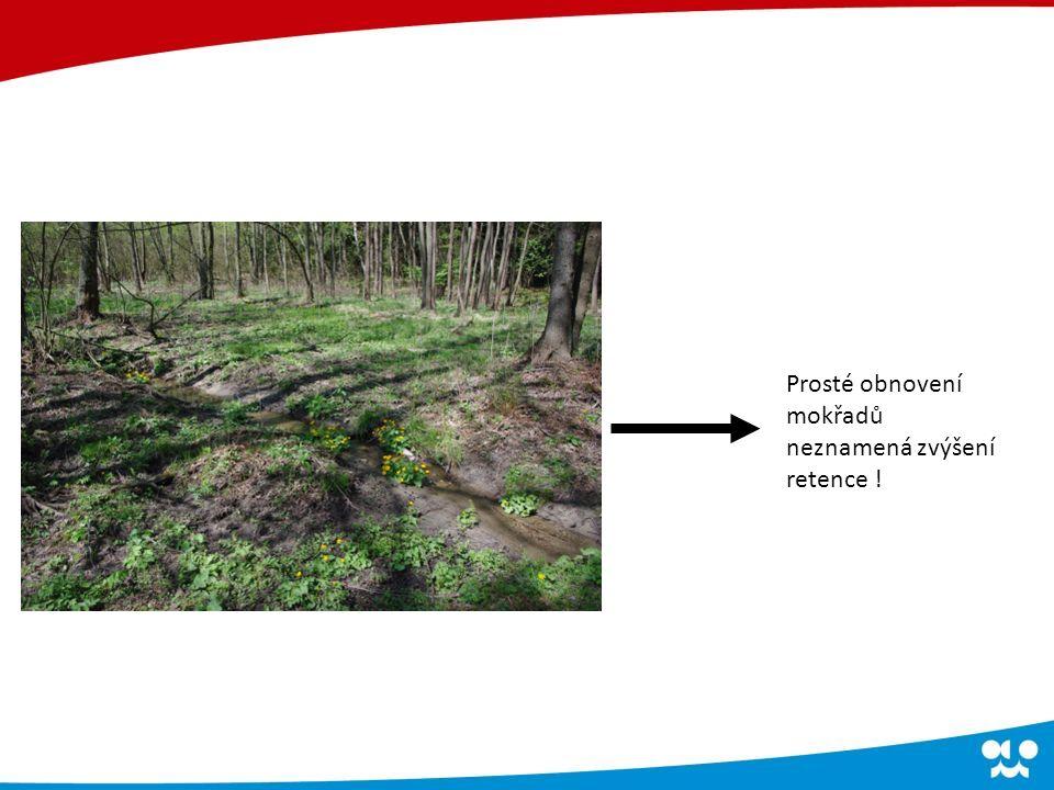 Prosté obnovení mokřadů neznamená zvýšení retence !