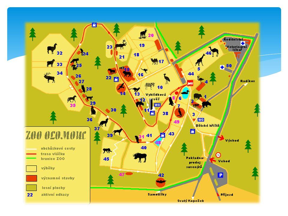  Plán znázorňuje menší území než mapa  Podrobnější orientace  Plán města Plány