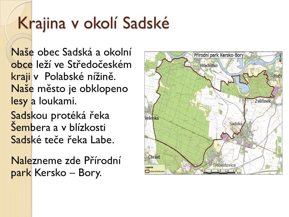 Krajina v okolí Sadské Naše obec Sadská a okolní obce leží ve Středočeském kraji v Polabské nížině.