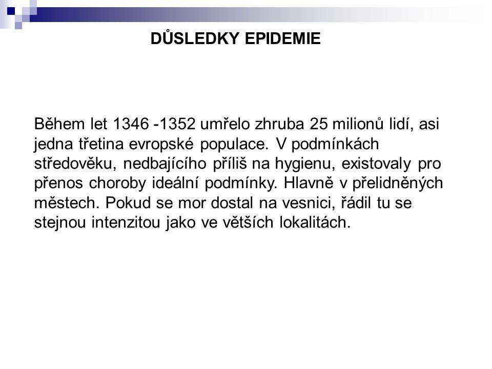 DŮSLEDKY EPIDEMIE Během let 1346 -1352 umřelo zhruba 25 milionů lidí, asi jedna třetina evropské populace.