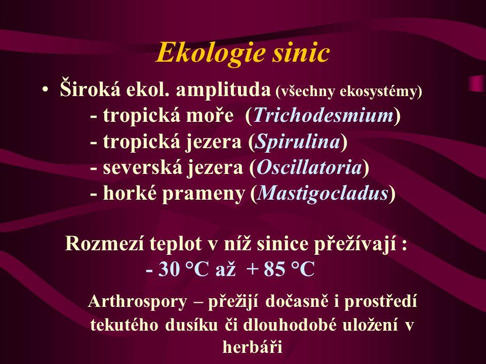Ekologie sinic Široká ekol.