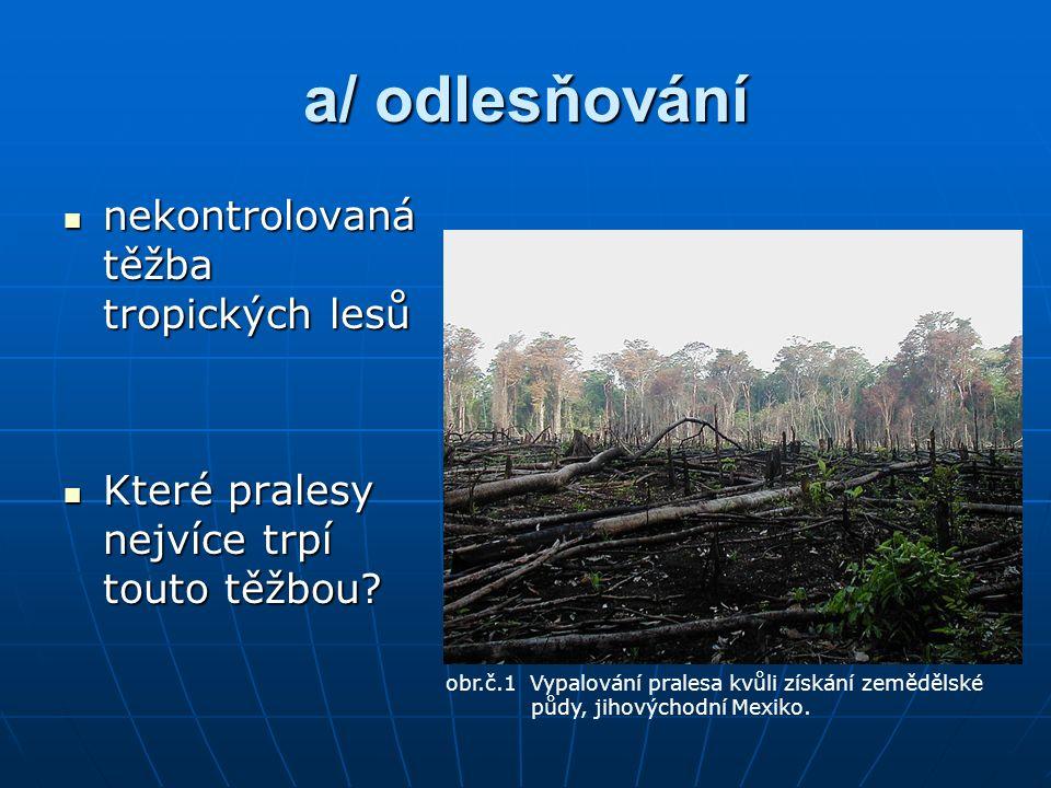 a/ odlesňování nekontrolovaná těžba tropických lesů nekontrolovaná těžba tropických lesů Které pralesy nejvíce trpí touto těžbou.