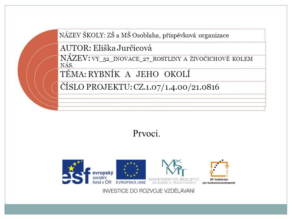 Datum vytvoření projektu 2012 Ročník6.