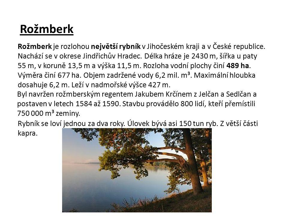 Rožmberk Byl navržen rožmberským regentem Jakubem Krčínem z Jelčan a Sedlčan a postaven v letech 1584 až 1590.