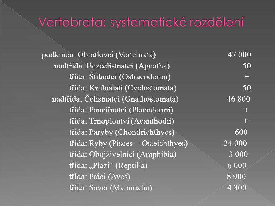 """podkmen: Obratlovci (Vertebrata) 47 000 nadtřída: Bezčelistnatci (Agnatha) 50 třída: Štítnatci (Ostracodermi) + třída: Kruhoústí (Cyclostomata) 50 nadtřída: Čelistnatci (Gnathostomata) 46 800 třída: Pancířnatci (Placodermi) + třída: Trnoploutví (Acanthodii) + třída: Paryby (Chondrichthyes) 600 třída: Ryby (Pisces = Osteichthyes) 24 000 třída: Obojživelníci (Amphibia) 3 000 třída: """"Plazi (Reptilia) 6 000 třída: Ptáci (Aves) 8 900 třída: Savci (Mammalia) 4 300"""