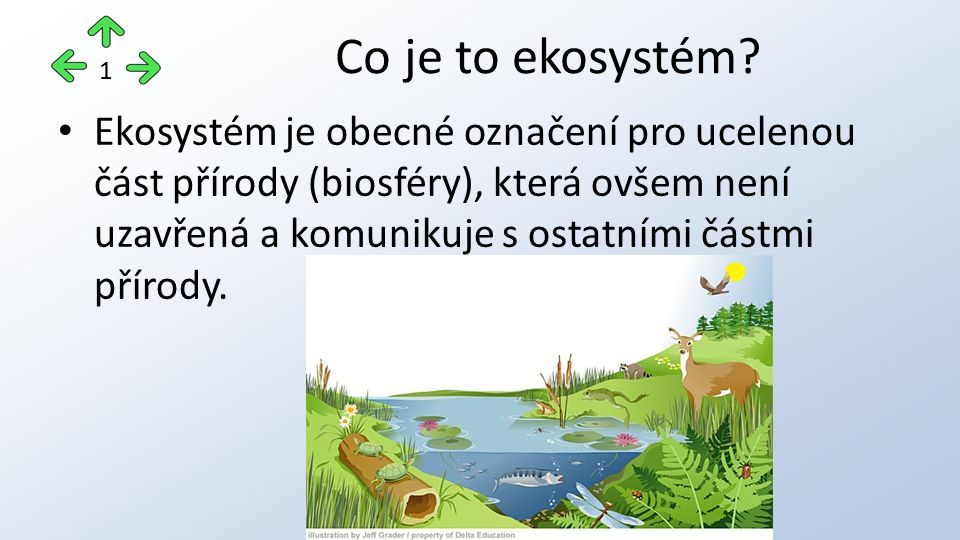 Ekosystém je obecné označení pro ucelenou část přírody (biosféry), která ovšem není uzavřená a komunikuje s ostatními částmi přírody.