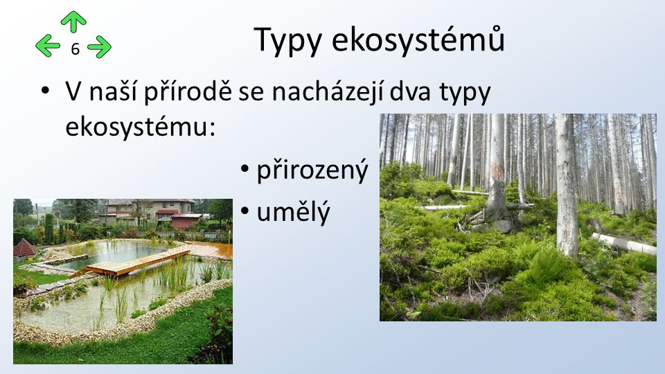 přirozený přírodní ekosystém s minimálními nebo žádnými zásahy člověka druhově bohaté území s nižší produkcí jsou schopné autoregulace a vývoje, při částečném porušení mají možnost obnovy Přirozený ekosystém 7