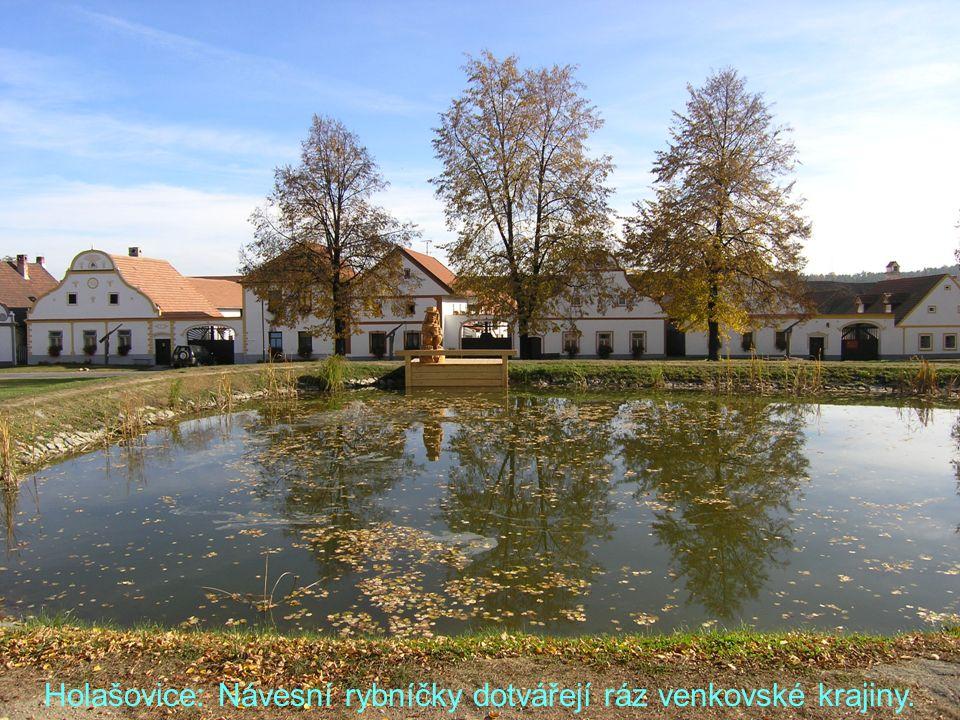 Holašovice: Návesní rybníčky dotvářejí ráz venkovské krajiny.