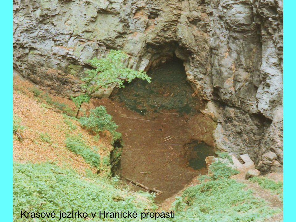 Antropogenní jezero po těžbě štěrkopísku v pískovně Halámky