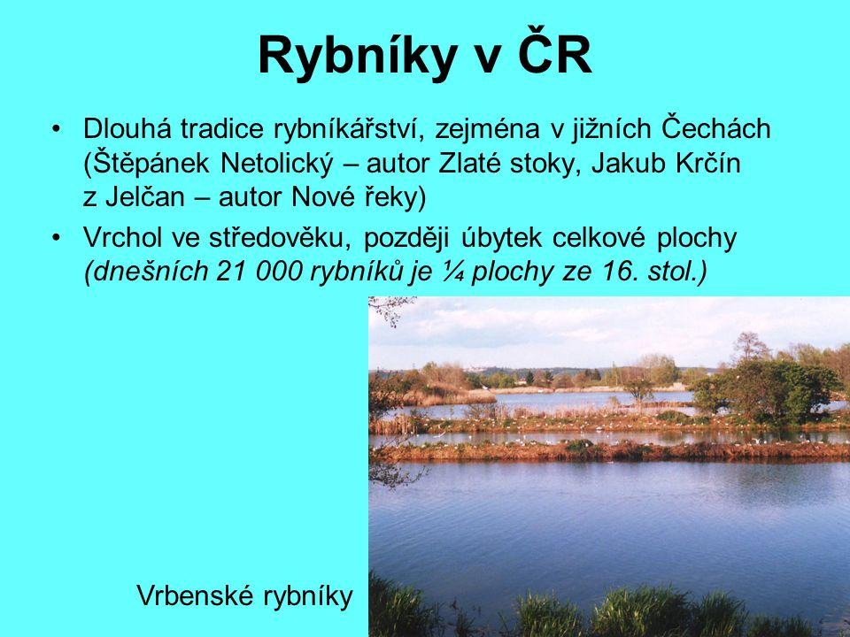 Největší rybníky 1.Rožmberk (489 ha) 2. Horusický (415 ha) 3.