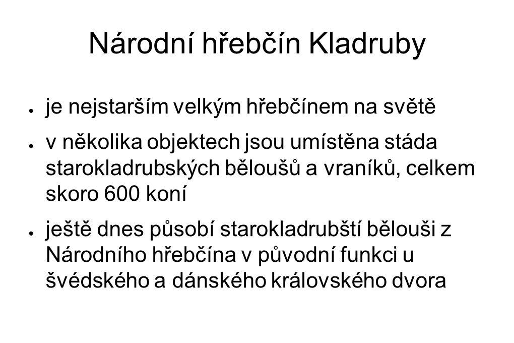 Národní hřebčín Kladruby ● je nejstarším velkým hřebčínem na světě ● v několika objektech jsou umístěna stáda starokladrubských běloušů a vraníků, cel