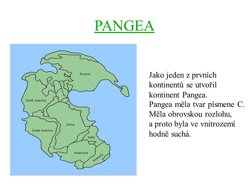 PANGEA Jako jeden z prvních kontinentů se utvořil kontinent Pangea. Pangea měla tvar písmene C. Měla obrovskou rozlohu, a proto byla ve vnitrozemí hod