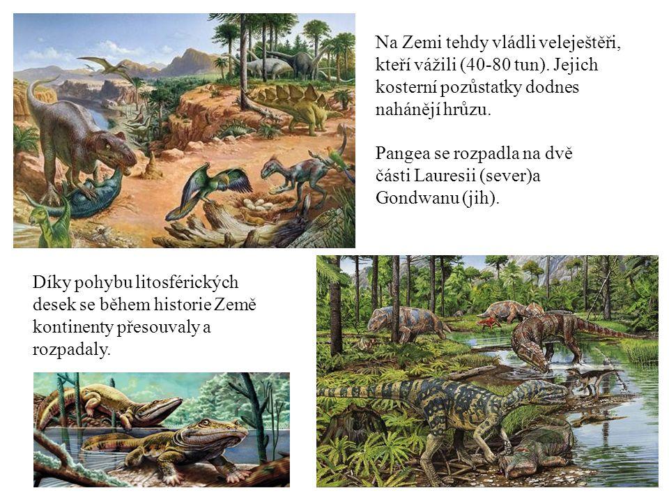 Díky pohybu litosférických desek se během historie Země kontinenty přesouvaly a rozpadaly. Na Zemi tehdy vládli veleještěři, kteří vážili (40-80 tun).