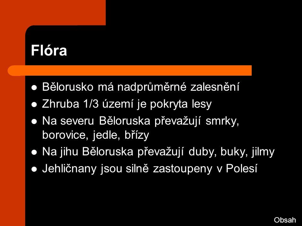 Flóra Bělorusko má nadprůměrné zalesnění Zhruba 1/3 území je pokryta lesy Na severu Běloruska převažují smrky, borovice, jedle, břízy Na jihu Běloruska převažují duby, buky, jilmy Jehličnany jsou silně zastoupeny v Polesí Obsah