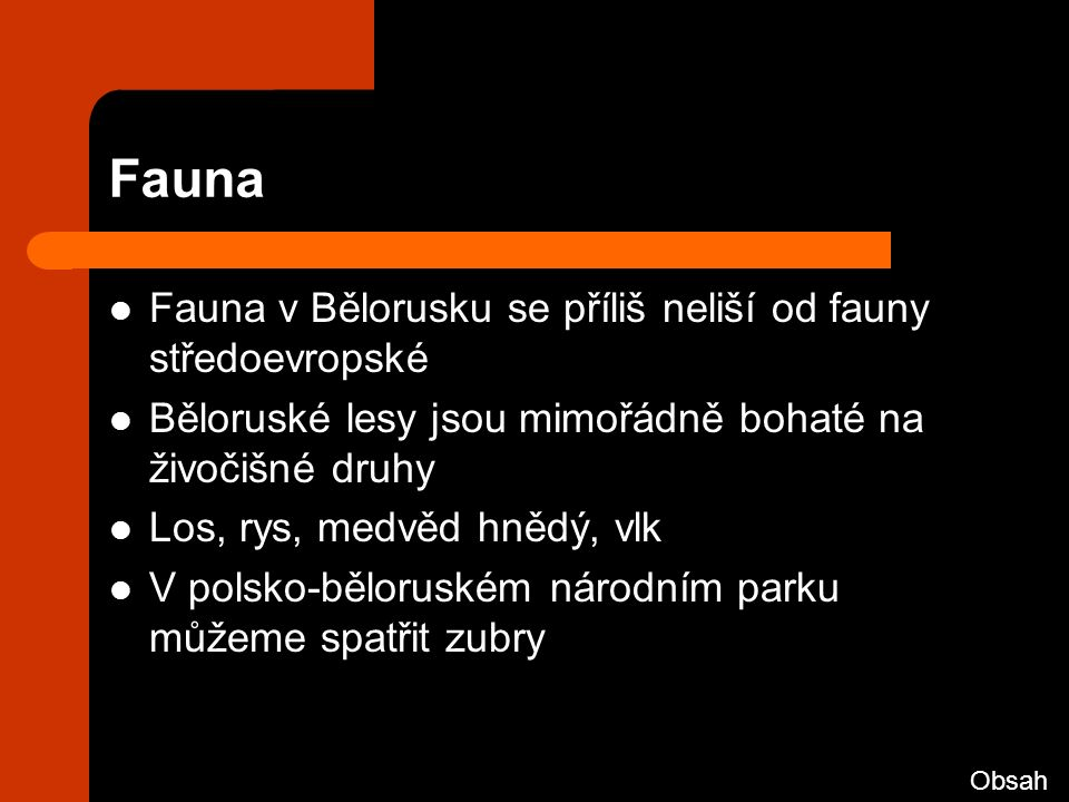 Fauna Fauna v Bělorusku se příliš neliší od fauny středoevropské Běloruské lesy jsou mimořádně bohaté na živočišné druhy Los, rys, medvěd hnědý, vlk V polsko-běloruském národním parku můžeme spatřit zubry Obsah